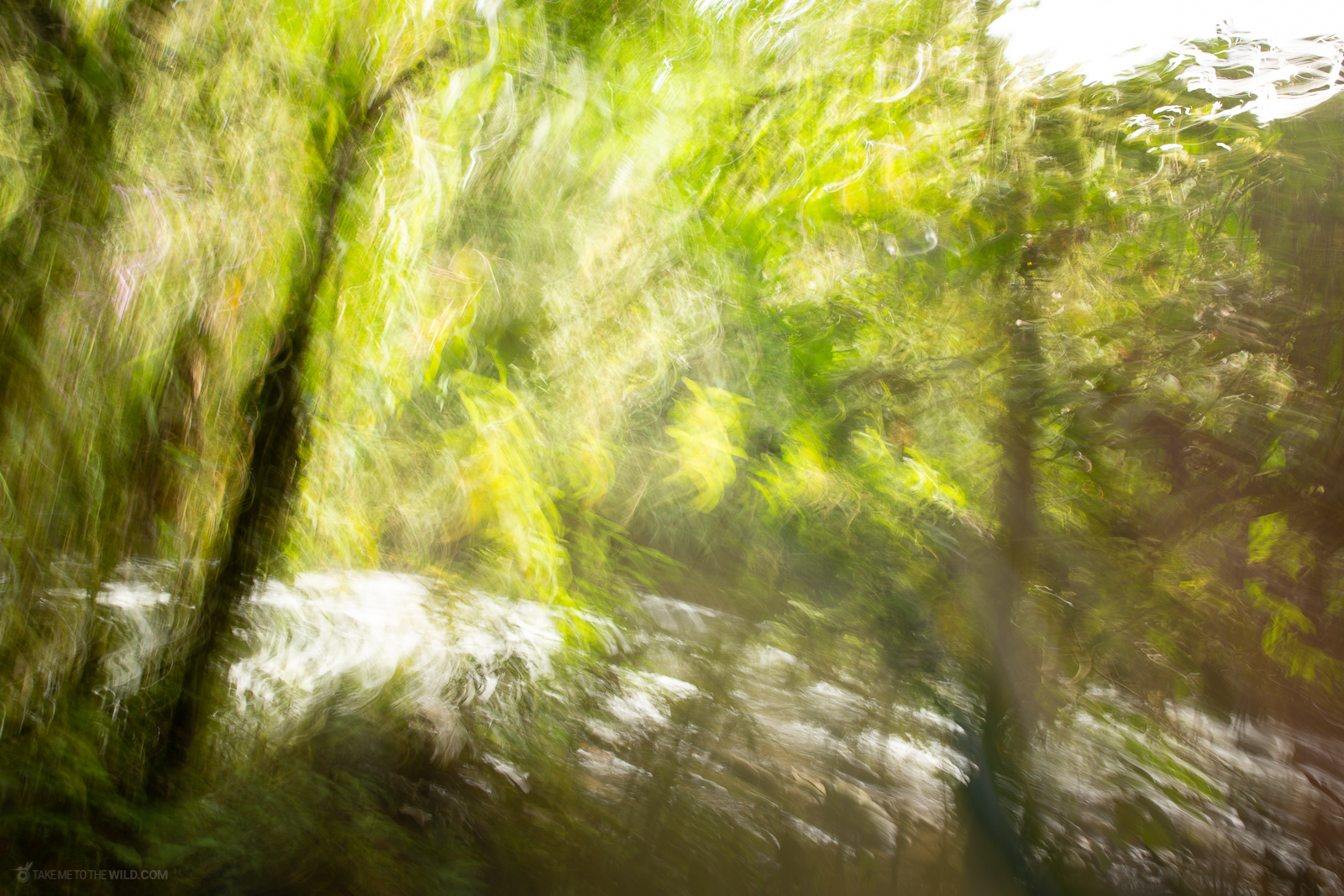 Long exposure photography of Otún River at Otún Quimbaya Flora and Fauna Sanctuary, Colombia. I especially like the brush like effect